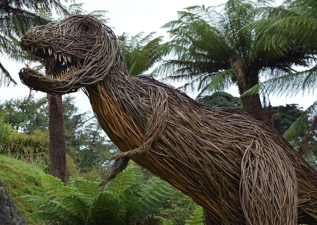 Enjoy a real life encounter...with Rexy, the willow dinosaur, at Logan Botanic Garden in Dumfries and Galloway.