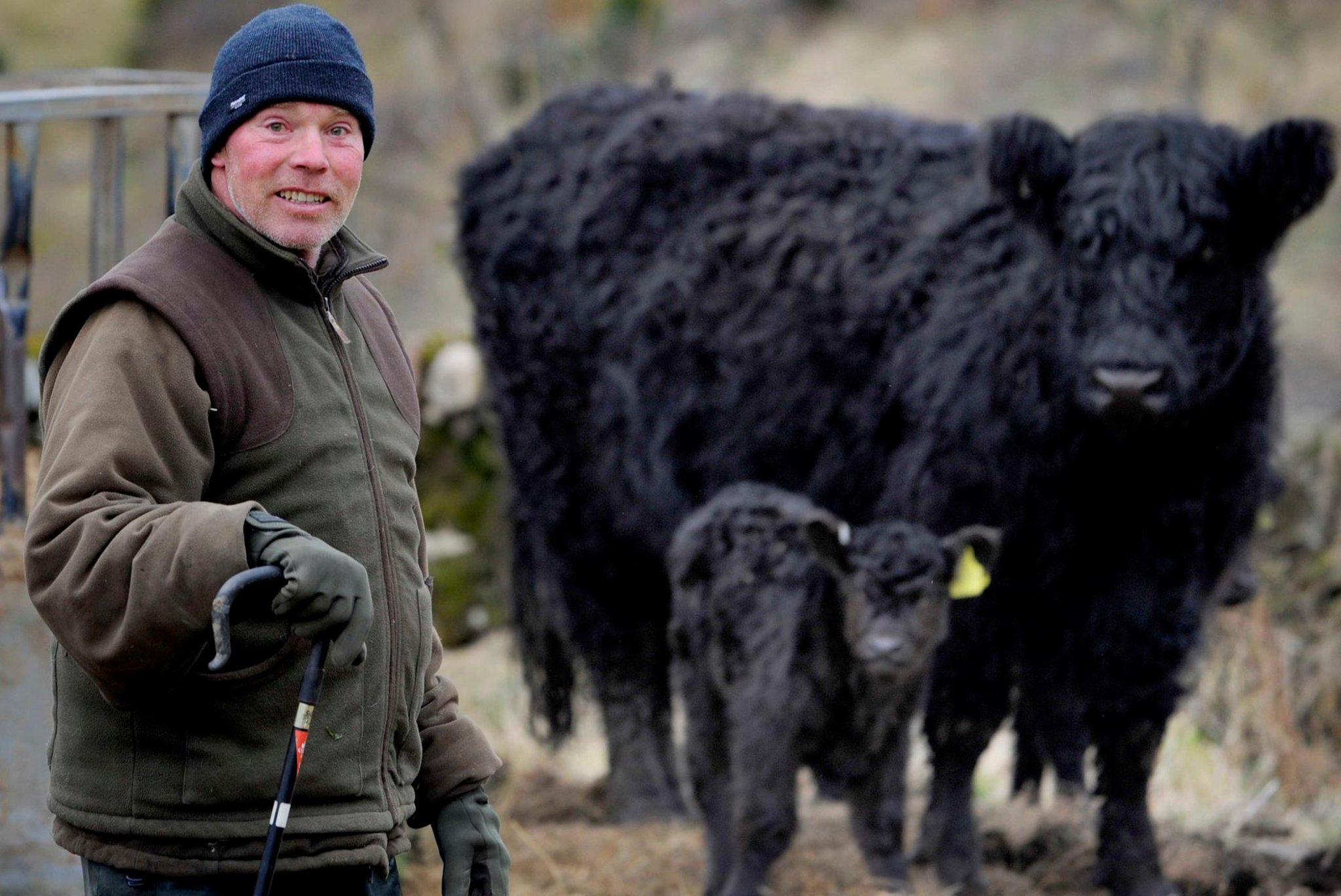 Farmers back plan for Galloway National Park