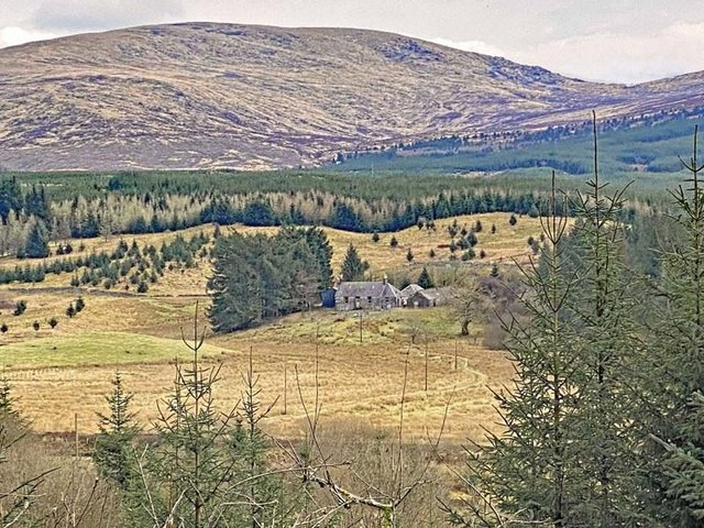 Tarfessock is nestled in the heart of the Galloway Forest Park