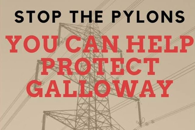 The campaign group Galloway Against Pylons have made their feelings clear