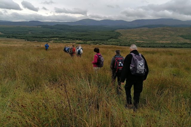 A guided walk across the Galloway landscape