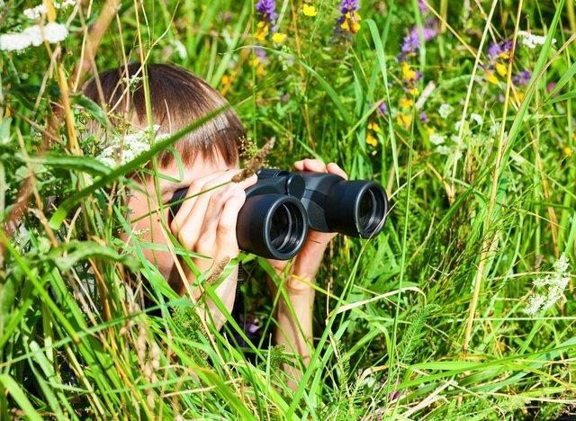 Young Nature Blogger Challenge 2021 celebrates 50 years of the UNESCO Man and Biosphere Program