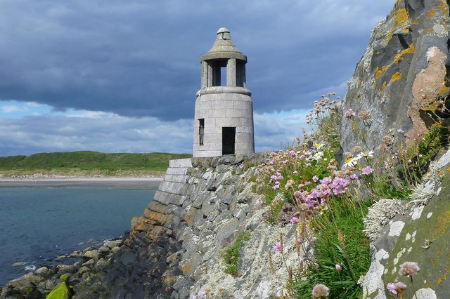 Visitors can discover more about the beautiful flora where the land meets the sea